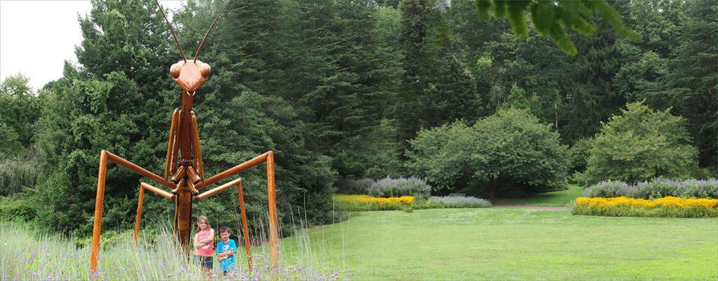 Morris Arboretum in Philadelphia