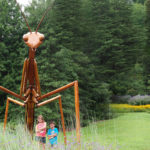 Giant Praying Mantis at Morris Arboretum