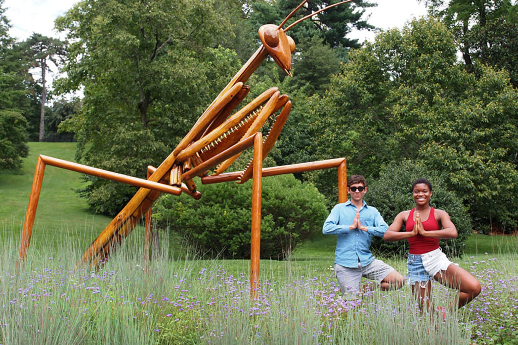 Giant Praying Mantis art