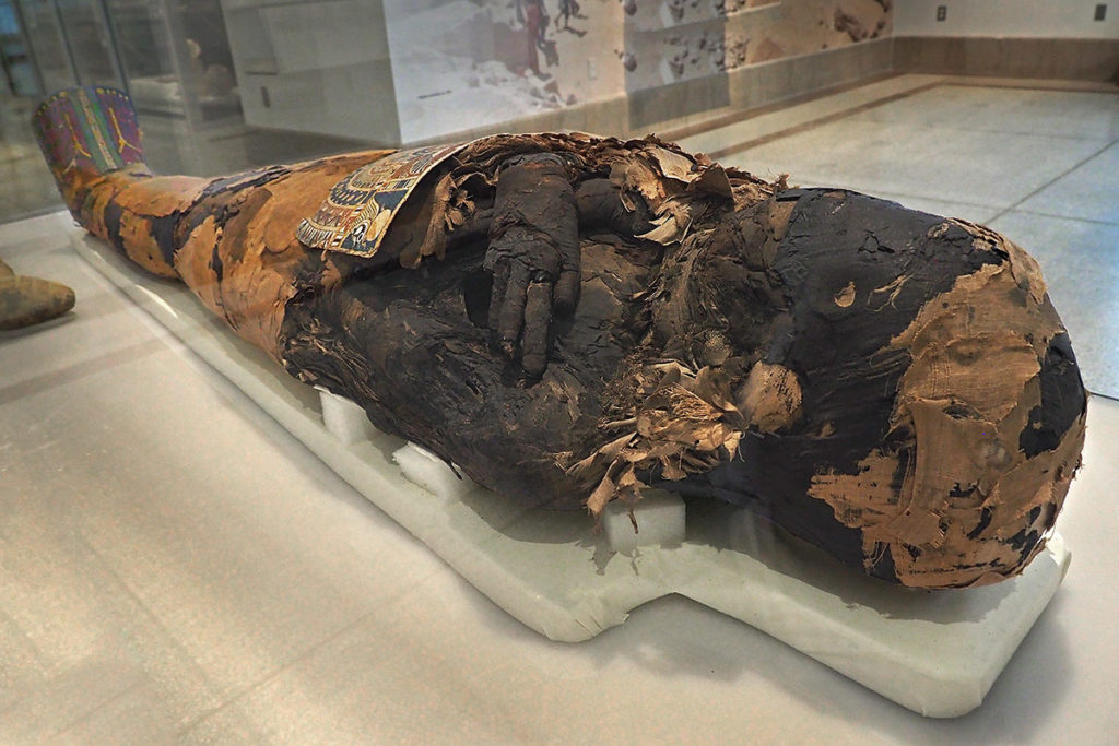 A mummy damaged by ancient grave robbers.