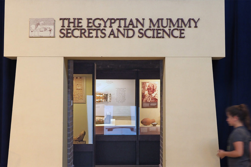 The Egyptian Museum Secrets and Science is another area of the Penn Museum.