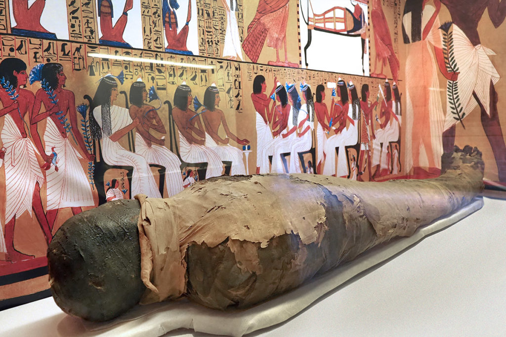 Mummy of a priest of the Egyptian God of the Sun.