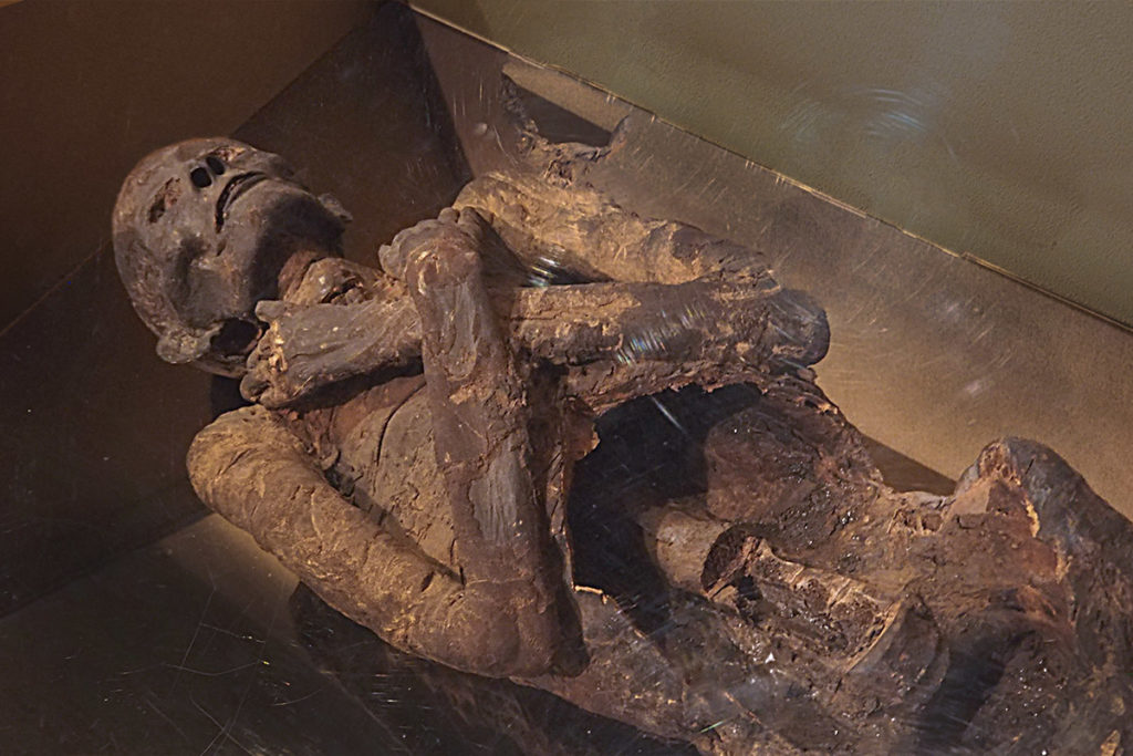 A gruesome but instructive display of how bodies are turned into mummies.