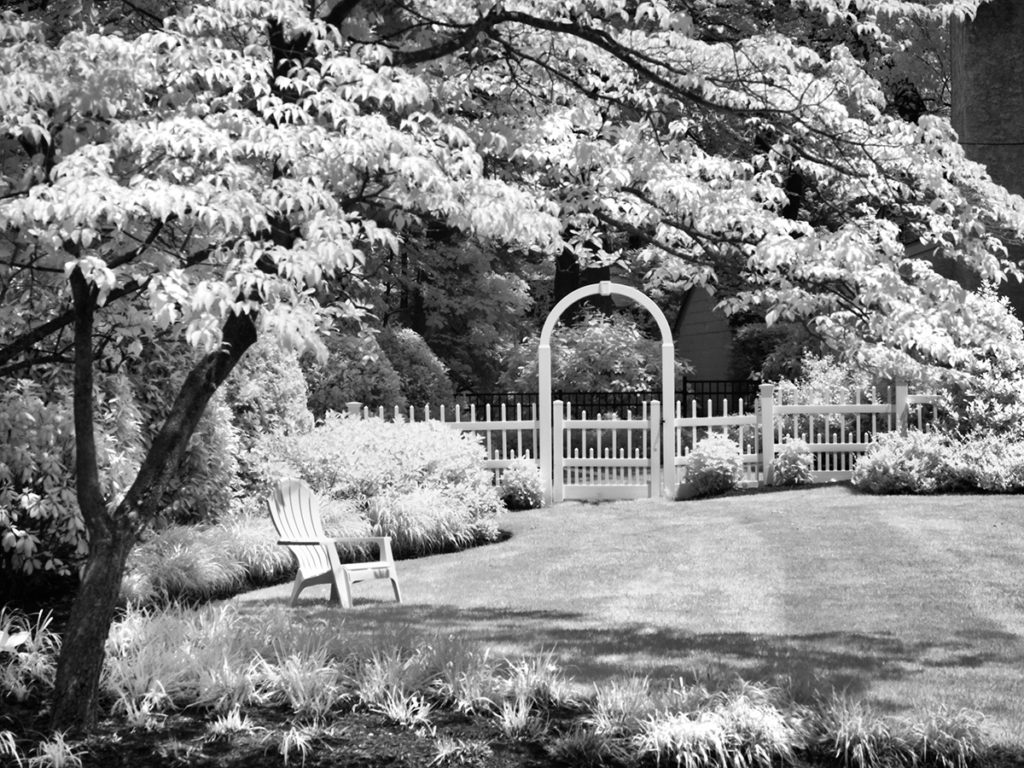 A scenic yard in Haddonfield, NJ